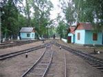 Горловина станции Родина