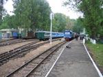 Станция Родина